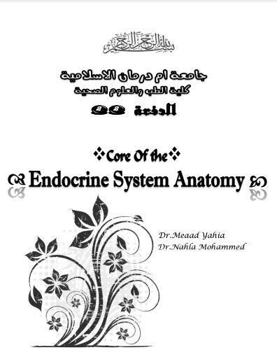 Core of the Endocrine System Anatomy [PDF]