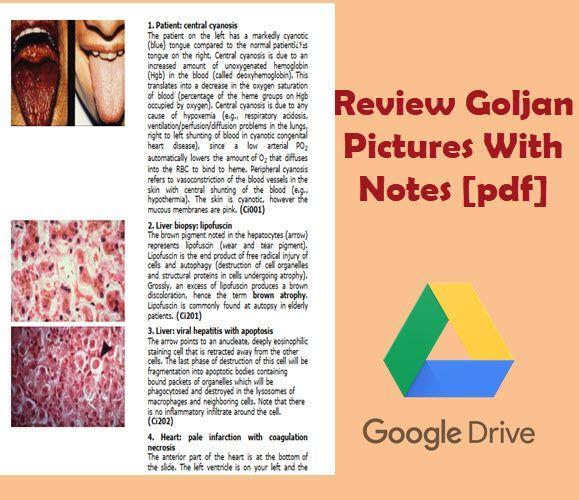 Goljan Pathology Notes Pdf