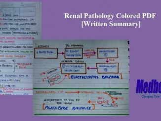 Renal Pathology Colored