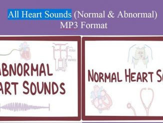 All Heart Sounds