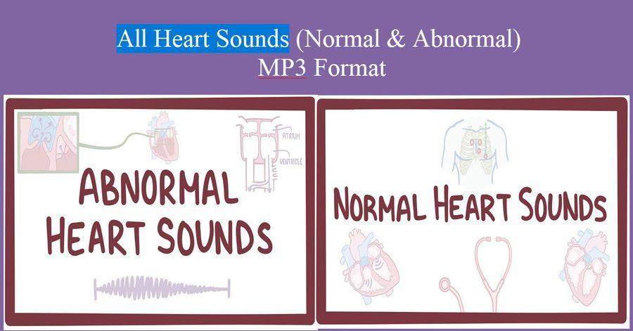All Heart Sounds