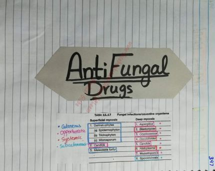 All-Anti-Fungal-Drugs-Arranged-in-Tables-PDF